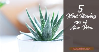 uses of aloe vera