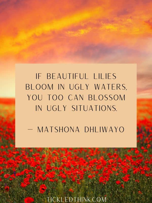 MORE BLOOMING QUOTED AND SAYINGS