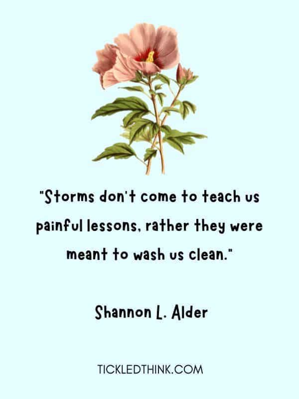 Inspirational storm quotes 1